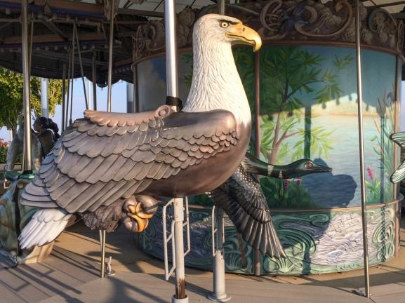 Carousel ride on a Bald Eagle © J. Ashley Nixon