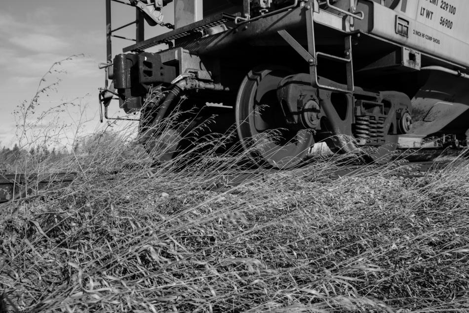 Prairie train #1, Lethbridge County, Alberta © J. Ashley Nixon