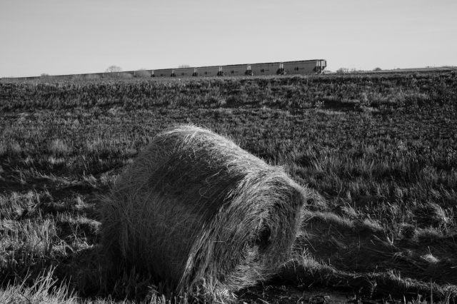 Prairie train #3, Lethbridge County, Alberta © J. Ashley Nixon