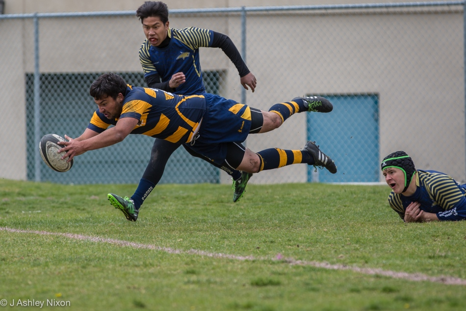 Griffins can fly! Action from Ernest manning High School Griffins Senior Boys rugby 7s
