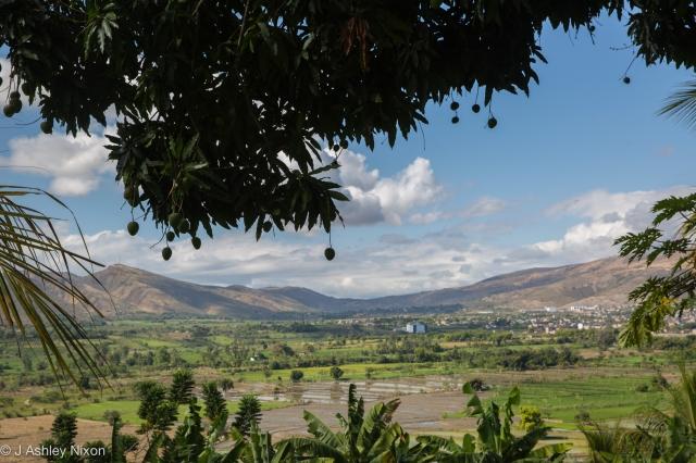 View across the rice fields in the Ara Valley, Jaén, Cajamarca, Peru. © J. Ashley Nixon