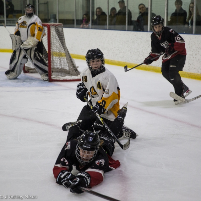 Action from the game between Olds Grizzlies and Calgary Girls Hockey Bantam 1 White Hawks. © J. Ashley Nixon